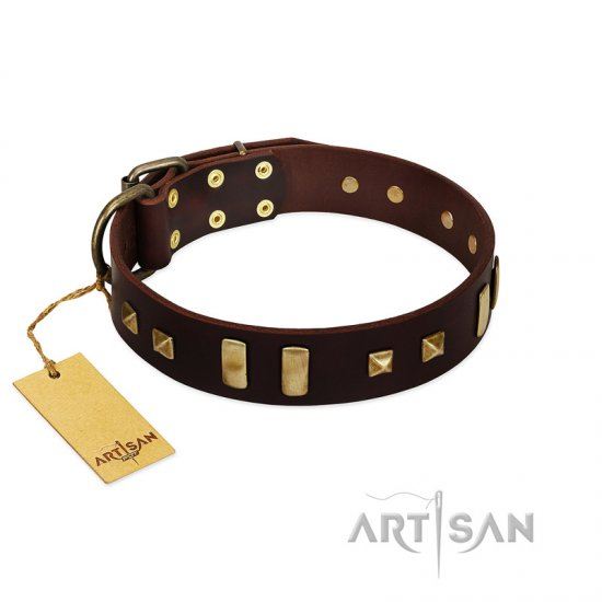 """Choco Delight"" FDT Artisan Brown Leather Pitbull Collar with Old Bronze-like Plates and Studs"