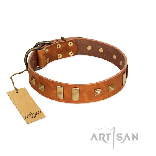 """Sand of Time"" FDT Artisan Tan Leather Pitbull Collar with Old Bronze-like Studs and Plates"