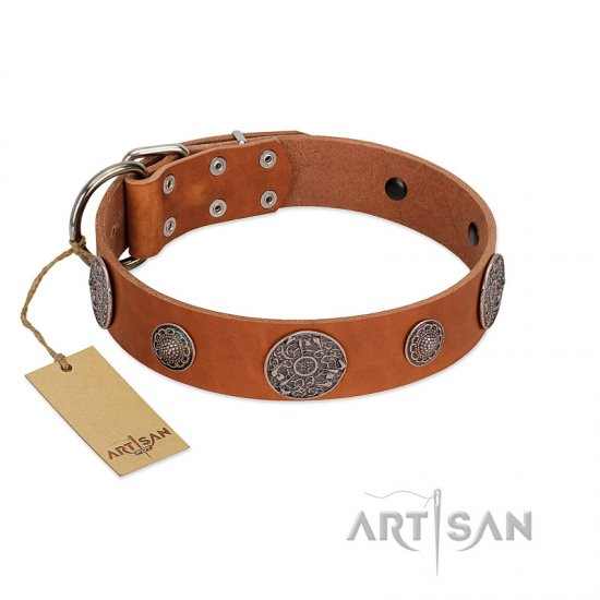 """Foxy Nature"" FDT Artisan Tan Leather Pitbull Collar with Chrome Plated Brooches"
