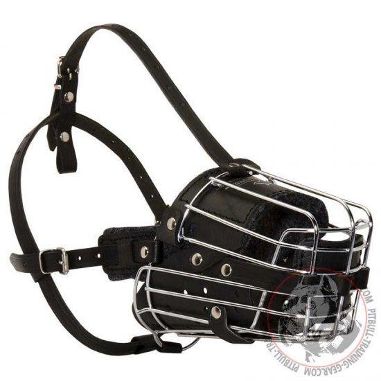 Fully Padded Wire Basket Pitbull Muzzle for Training/Walking