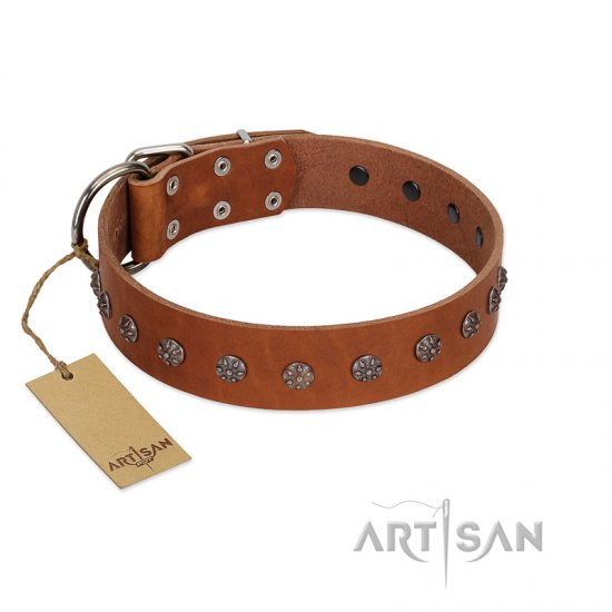 """Daintiness"" Designer Handmade FDT Artisan Tan Leather Pitbull Collar with Silver-Like Adornments"