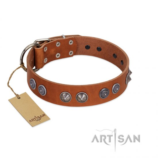 """Silver Necklace"" Incredible FDT Artisan Tan Leather Pitbull Colar with Silver-Like Adornments"