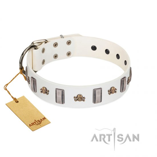 """Mysterious Voyage"" FDT Artisan White Leather Pitbull Collar with Engraved Plates and Skulls"