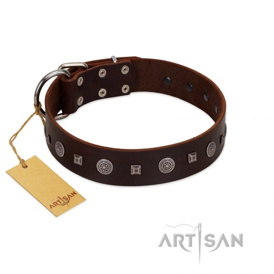 """Pure Sensation"" Exclusive FDT Artisan Brown Leather Pitbull Collar with Fancy Brooches and Studs"