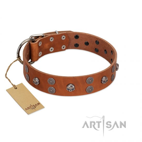 """Road Rider"" FDT Artisan Tan Leather Pitbull Collar with Old Silver-like Skulls and Medallions"