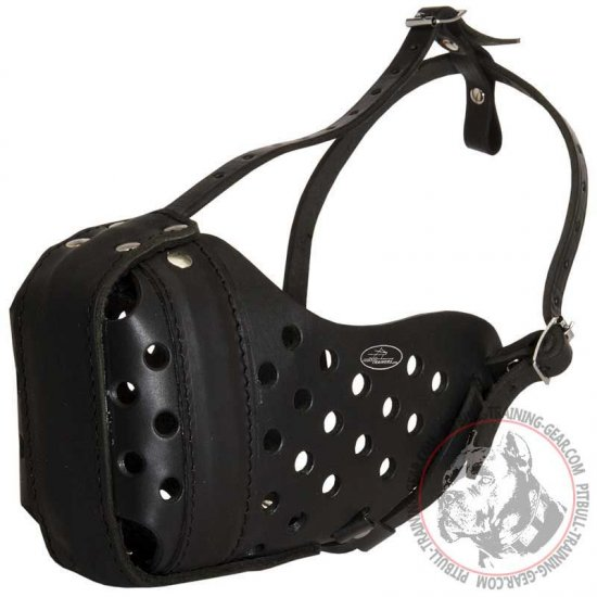"Agitation Training Leather Pit Bull Muzzle ""Dondi"""
