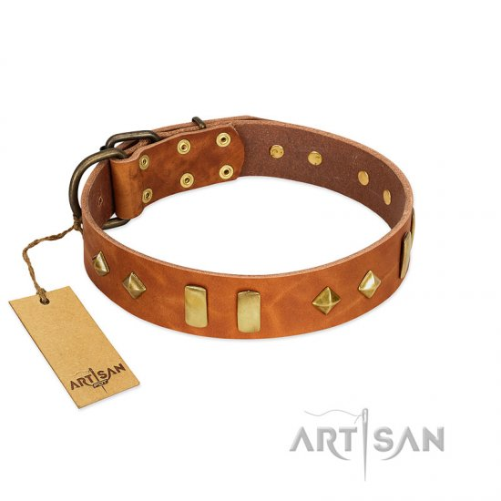 """Woofy Dawn"" FDT Artisan Tan Leather Pitbull Collar with Plates and Rhombs"