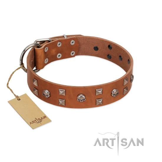 """Enchanted Skulls"" FDT Artisan Tan Leather Pitbull Collar with Chrome Plated Skulls"