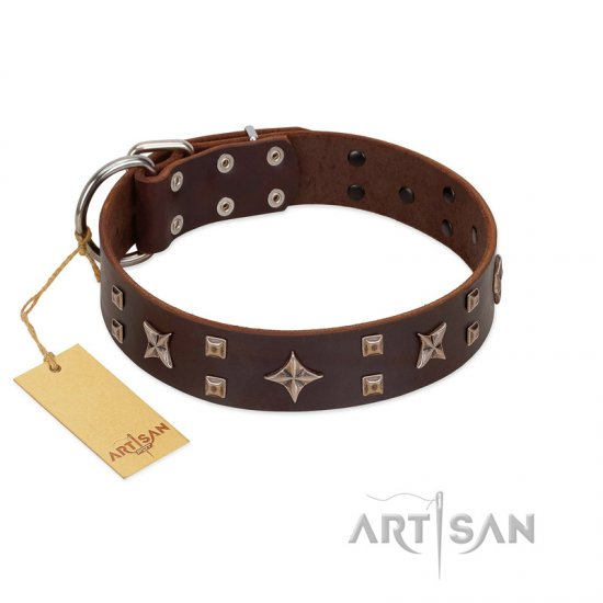 """Stars in Sands"" Modern FDT Artisan Brown Leather Pitbull Collar with Studs and Stars"