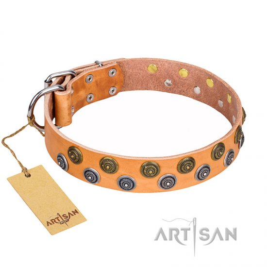 """Precious Sparkle"" FDT Artisan Studded Leather Pitbull Collar - 1 1/2 inch (40 mm) wide"