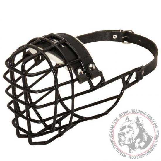 Winter Walking & Training Wire Basket Pitbull Muzzle with Padded Nose Area
