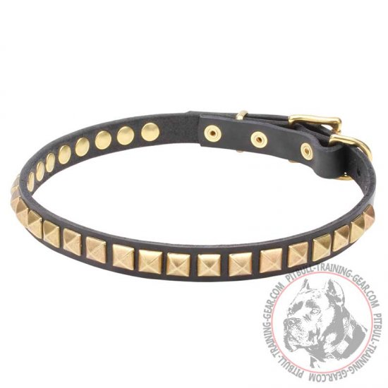 'Necklace-like' Pit Bull Dog Collar with Shining Studs - 4/5 inch (20 mm) wide