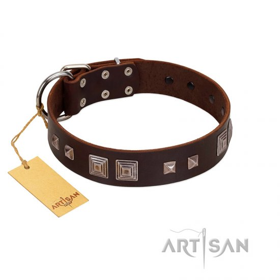 """Object of Virtu"" FDT Artisan Brown Leather Pitbull Collar with Old Silver-like Square Studs and Pyramids"