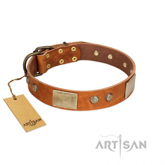 """Ancient Treasures"" FDT Artisan Tan Leather Pitbull Collar with Antiqued Plates and Studs"