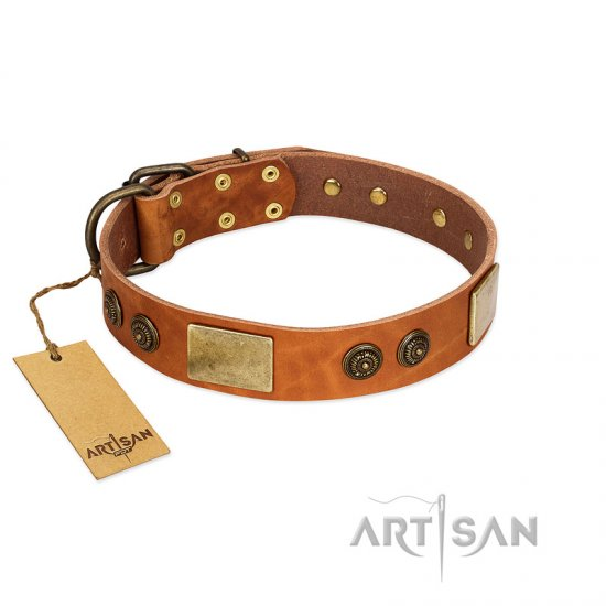 """Bronze Century"" FDT Artisan Tan Leather Pitbull Collar with Plates and Brooches with Cool Ornament"