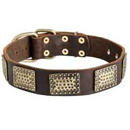 Walking Leather Pitbull Collar with Vintage Brass Plates