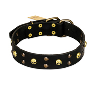 FDT Artisan 'Heavy Metal' Leather Pitbull Collar with Skulls and Studs 1 1/2 inch (40 mm)