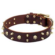 'Hard Rock' Pitbull Leather Dog Collar with Brass Skulls and Spikes - 1 3/5 inch (40 mm) wide