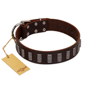 """Brown Lace"" Handmade FDT Artisan Brown Leather Pitbull Collar for Everyday Walks"