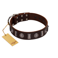"""Spiky Way"" FDT Artisan Brown Leather Pitbull Collar with Silver-Like Decorations"