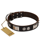 """Baller Status"" FDT Artisan Brown Leather Pitbull Collar Adorned with a Set of Chrome Plated Studs and Plates"