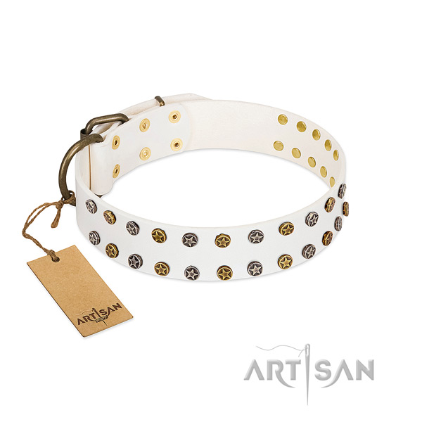 Stylish design full grain genuine leather dog collar with durable embellishments