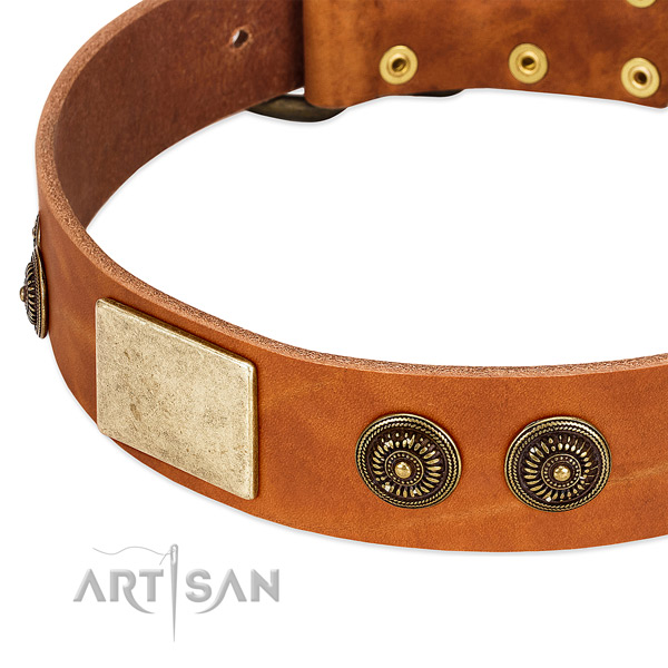 Convenient dog collar handmade for your beautiful pet