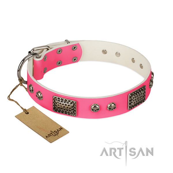 Adjustable full grain genuine leather dog collar for stylish walking your canine