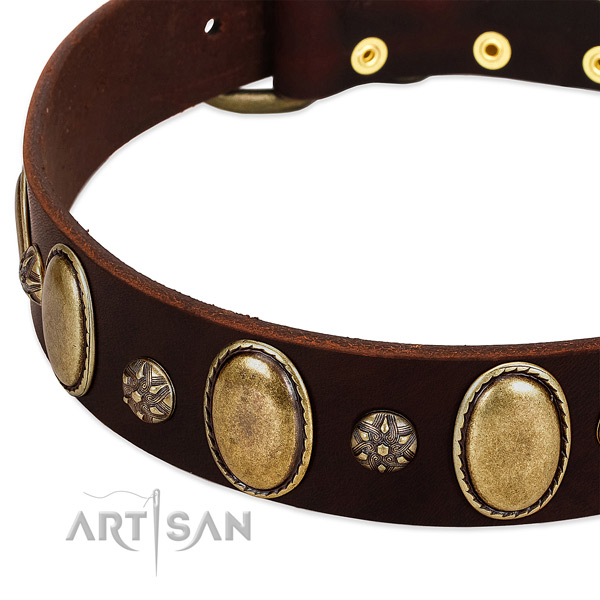 Daily walking soft to touch full grain natural leather dog collar