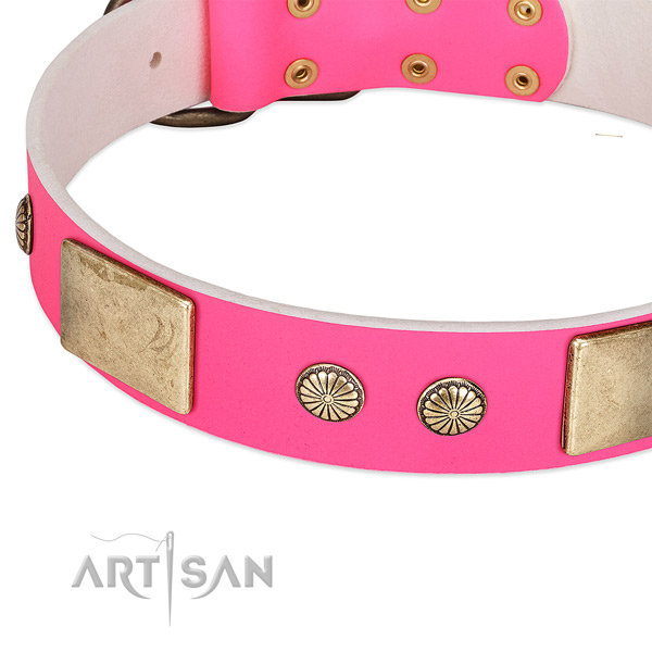 Corrosion resistant traditional buckle on full grain leather dog collar for your four-legged friend