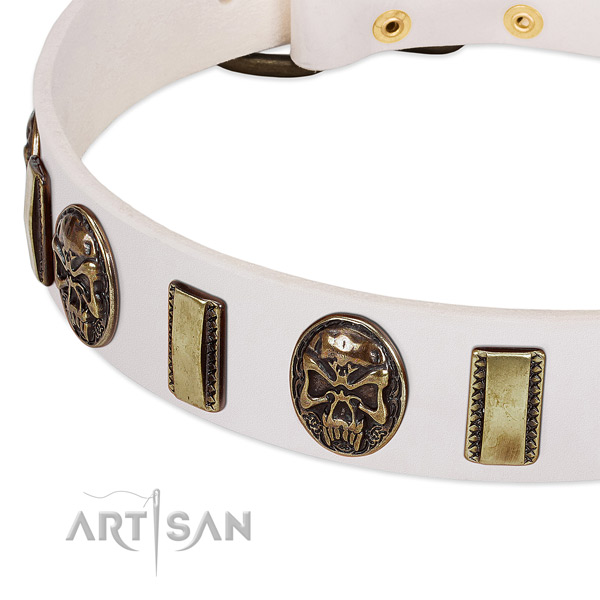 Strong adornments on leather dog collar for your four-legged friend