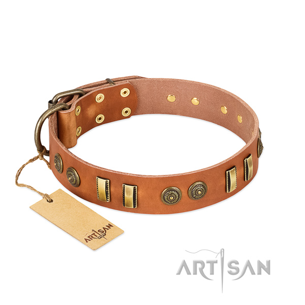 Reliable traditional buckle on natural leather dog collar for your four-legged friend