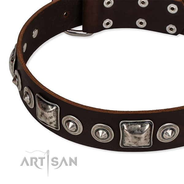 Leather dog collar made of best quality material with decorations