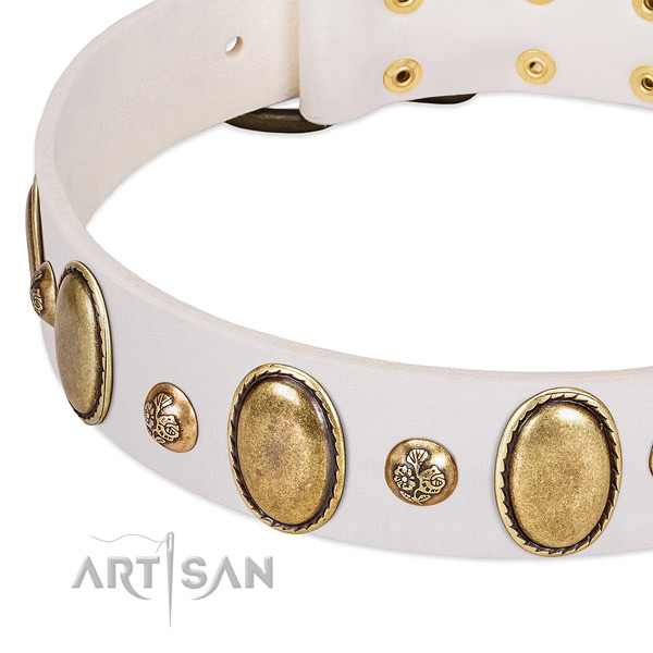 Natural leather dog collar with impressive decorations