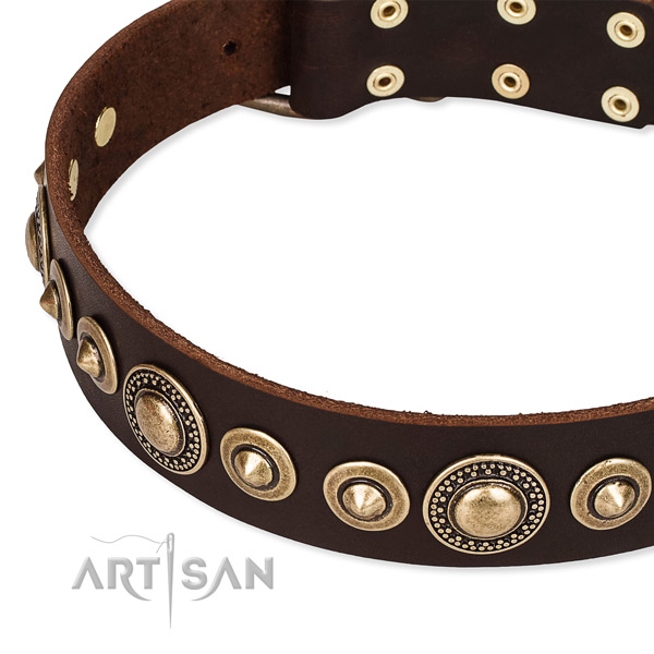 Best quality leather dog collar created for your handsome canine