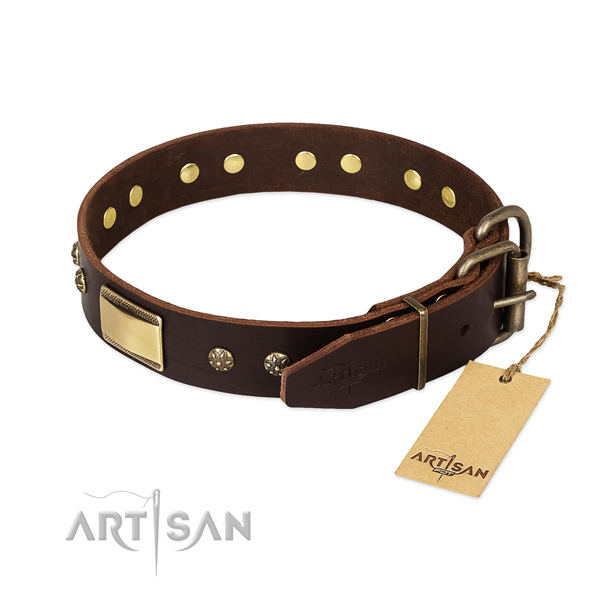 Unusual genuine leather collar for your doggie