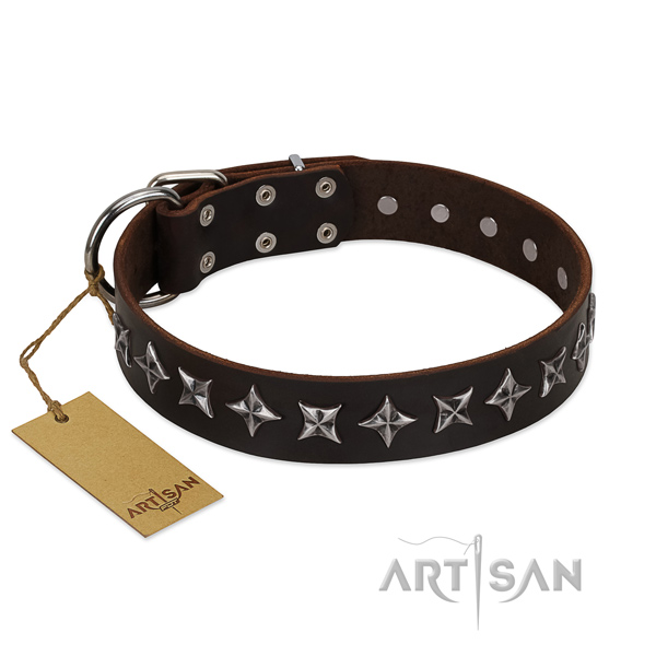 Basic training dog collar of fine quality full grain natural leather with adornments