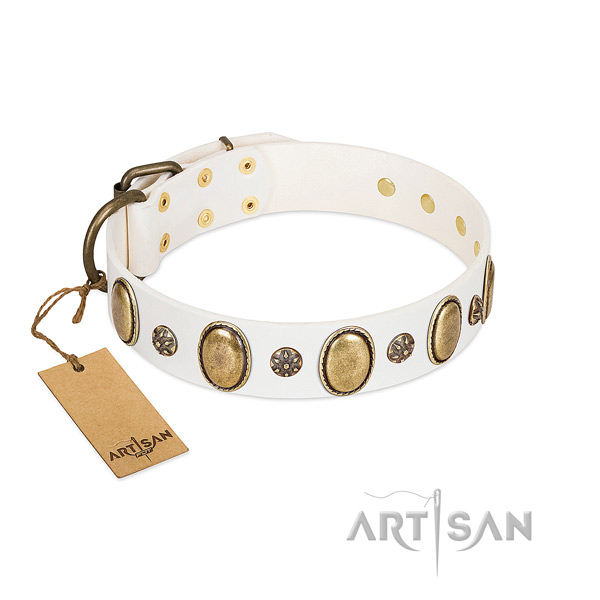 Stylish walking quality leather dog collar with decorations