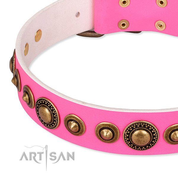 High quality full grain natural leather dog collar handcrafted for your lovely four-legged friend