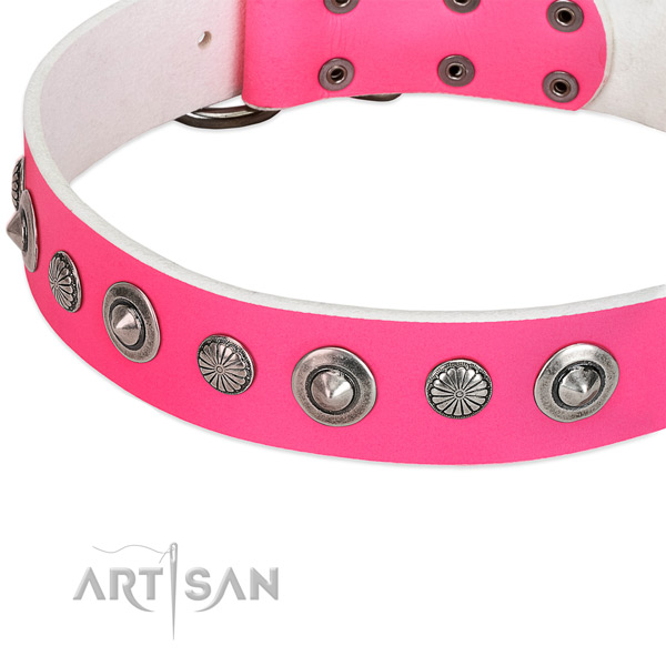 Natural leather collar with corrosion proof buckle for your stylish dog