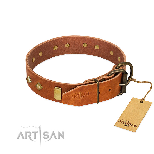 Daily walking leather dog collar with amazing decorations