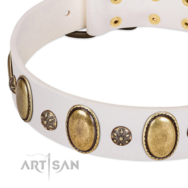 Stylish walking soft leather dog collar with studs