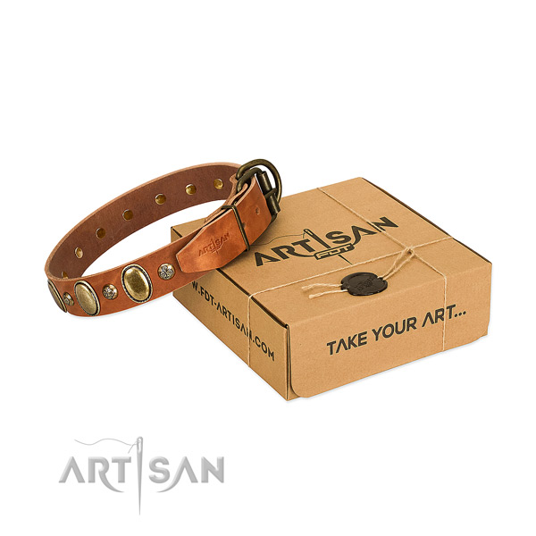 Handcrafted genuine leather dog collar with strong fittings