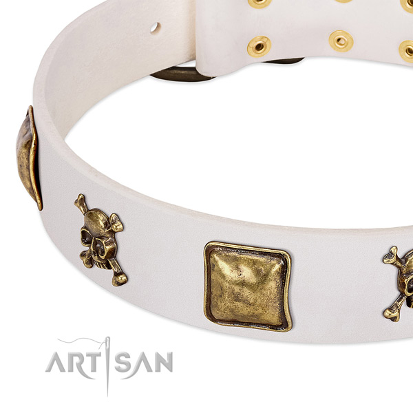 Fashionable genuine leather dog collar with strong embellishments