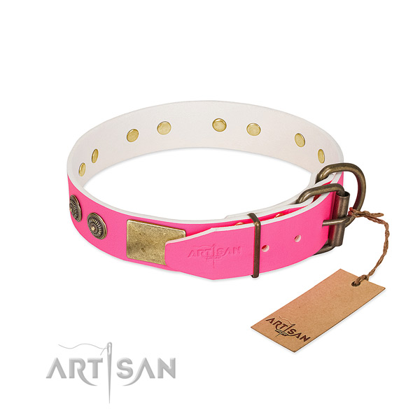 Corrosion resistant hardware on full grain natural leather collar for fancy walking your doggie