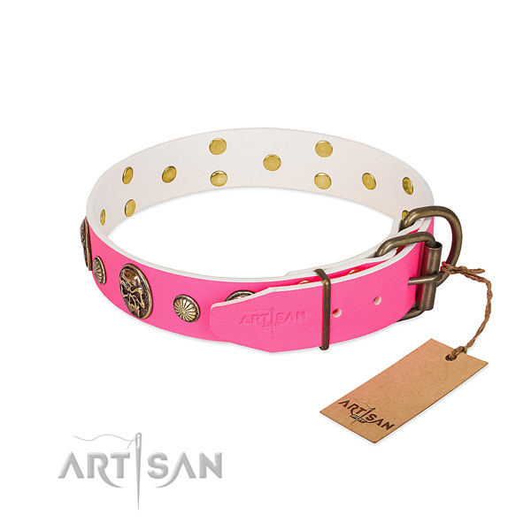 Corrosion proof embellishments on genuine leather dog collar for your canine