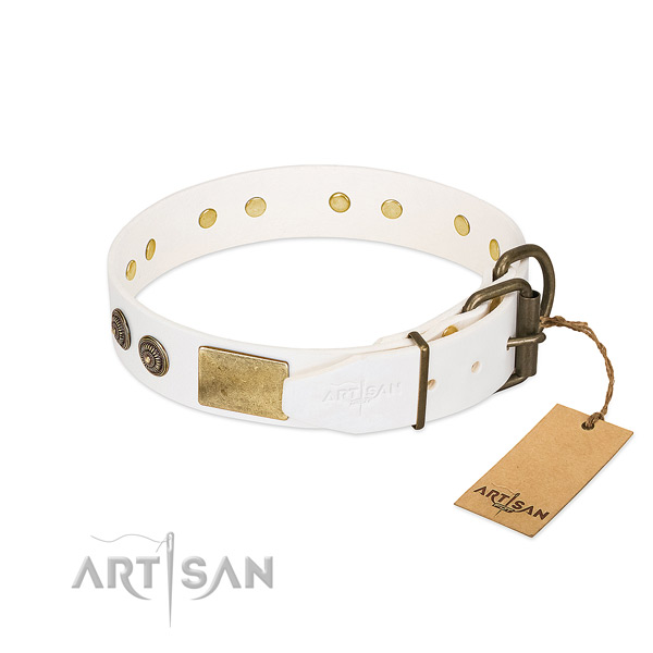 Corrosion proof buckle on natural genuine leather collar for daily walking your pet