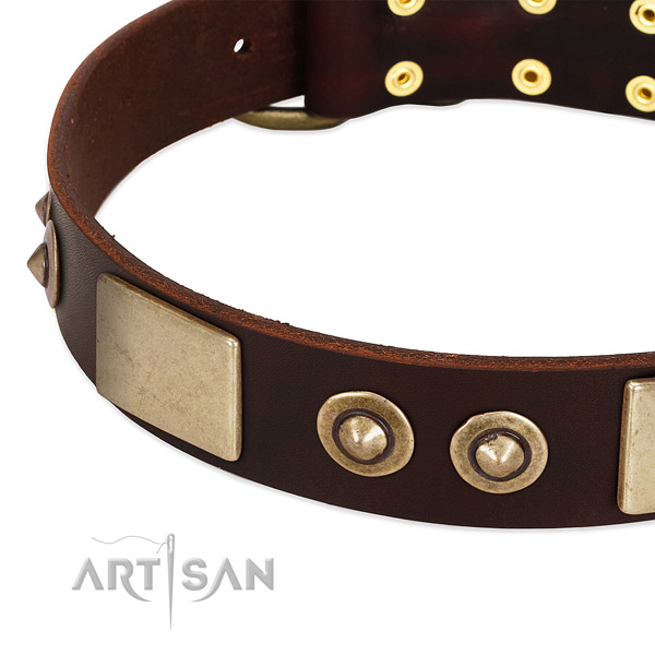 Durable adornments on full grain genuine leather dog collar for your four-legged friend