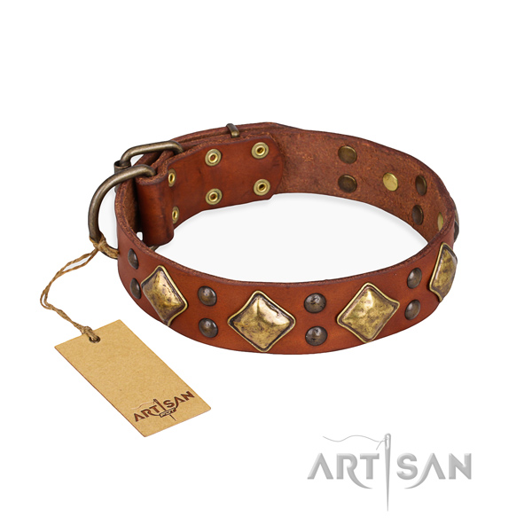 Stylish walking fashionable dog collar with corrosion resistant D-ring