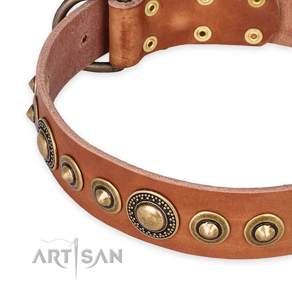 Top notch leather dog collar crafted for your impressive pet